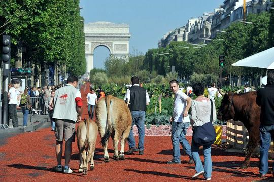 FRANCE-FARMING-UNIONS-CHAMPS-ELYSEES
